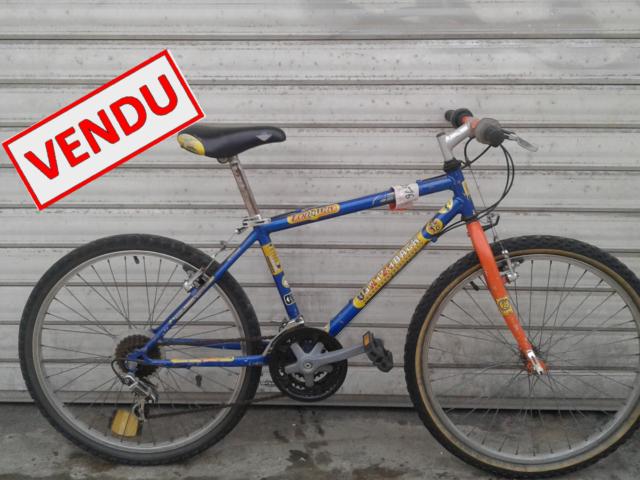 panier pour vélo de ville